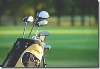 golf luggage1